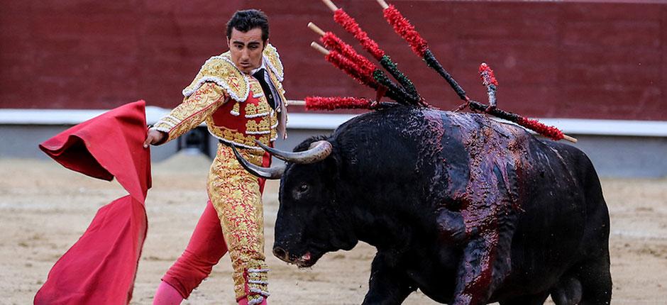 matador and toro