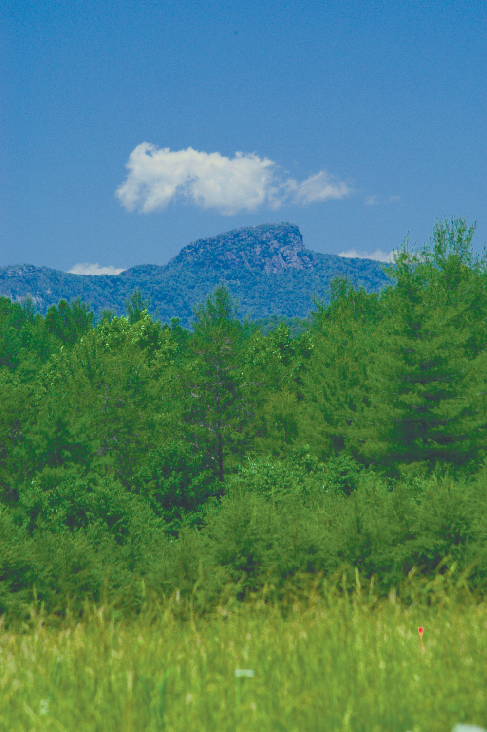 View of Table Rock from Catawba River Club.