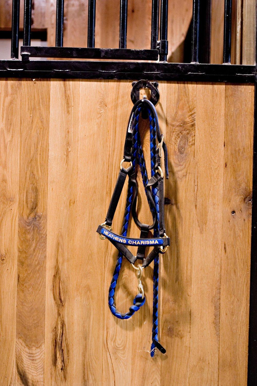 Resident horse halter on stall.