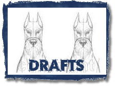 Click - Breed Standard Drawings begin with Drafts