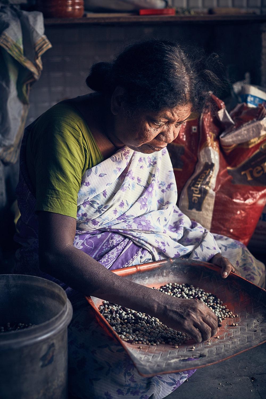 Indien 204, Anders Brinckmeyer.jpg