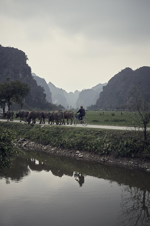 Vietnam - February 2018