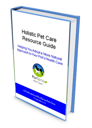 Holistic eBook download