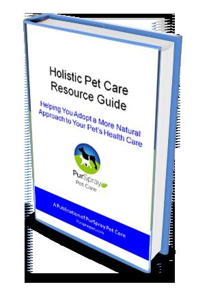 Holistic eBook download