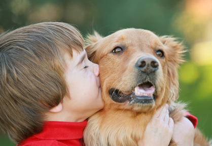 Children can get very close to their pets' toxic flea collars.