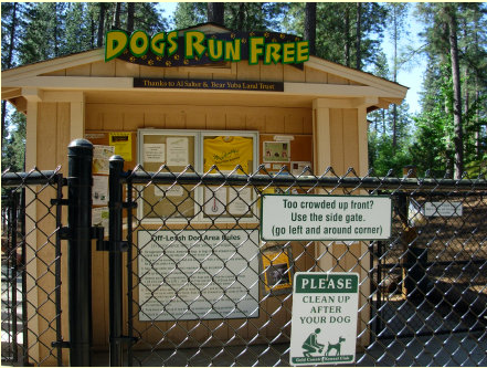Dogs Run Free dog park in Grass Valley, CA