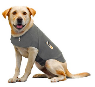 Vet visit stress may be calmed with Thundershirt.