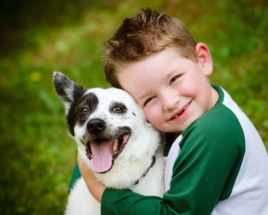 Children are exposed to toxic chemicals in dogs' flea collars.