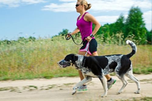 Walking and running a dog