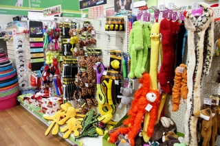 Pet toys often appeal to the owner but may not be safe for the pet.