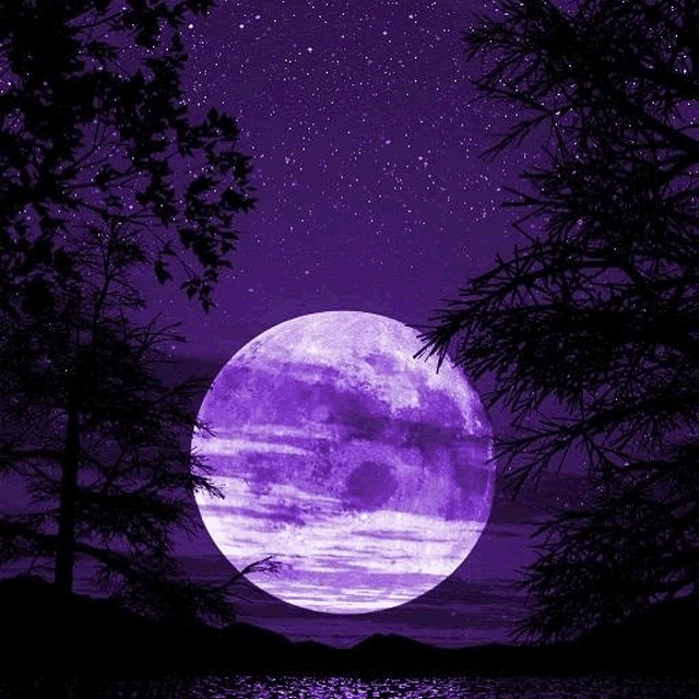 I'm not sure what's impacting me more..thanksgiving or the full moon happening in a few hours...by the feel of it...full moon. #fullmoonmagic #fullmoon #beavermoon #spirituality #consciousness