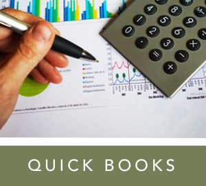 quick books.jpg