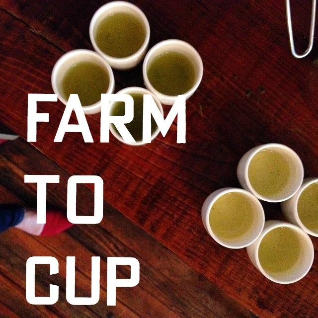 farm to cup.jpg