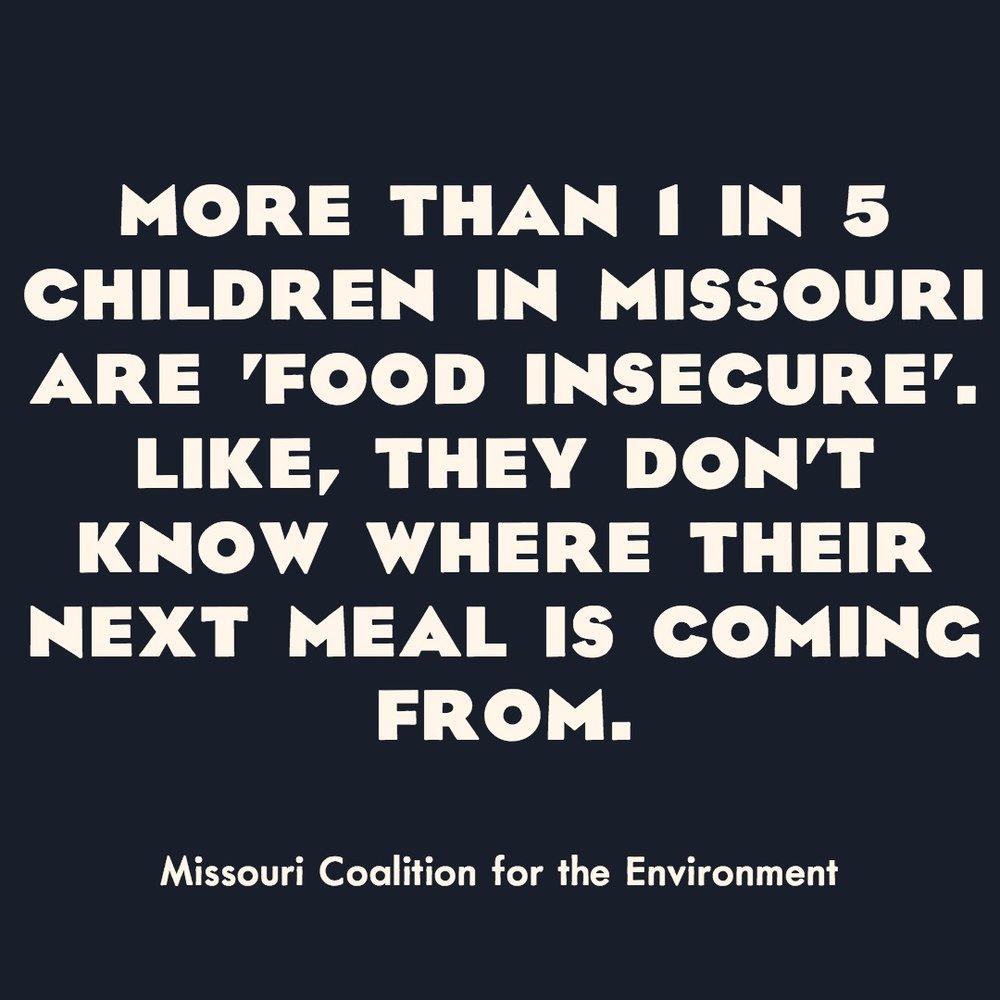 Missouri Coalition for the Environment.jpg