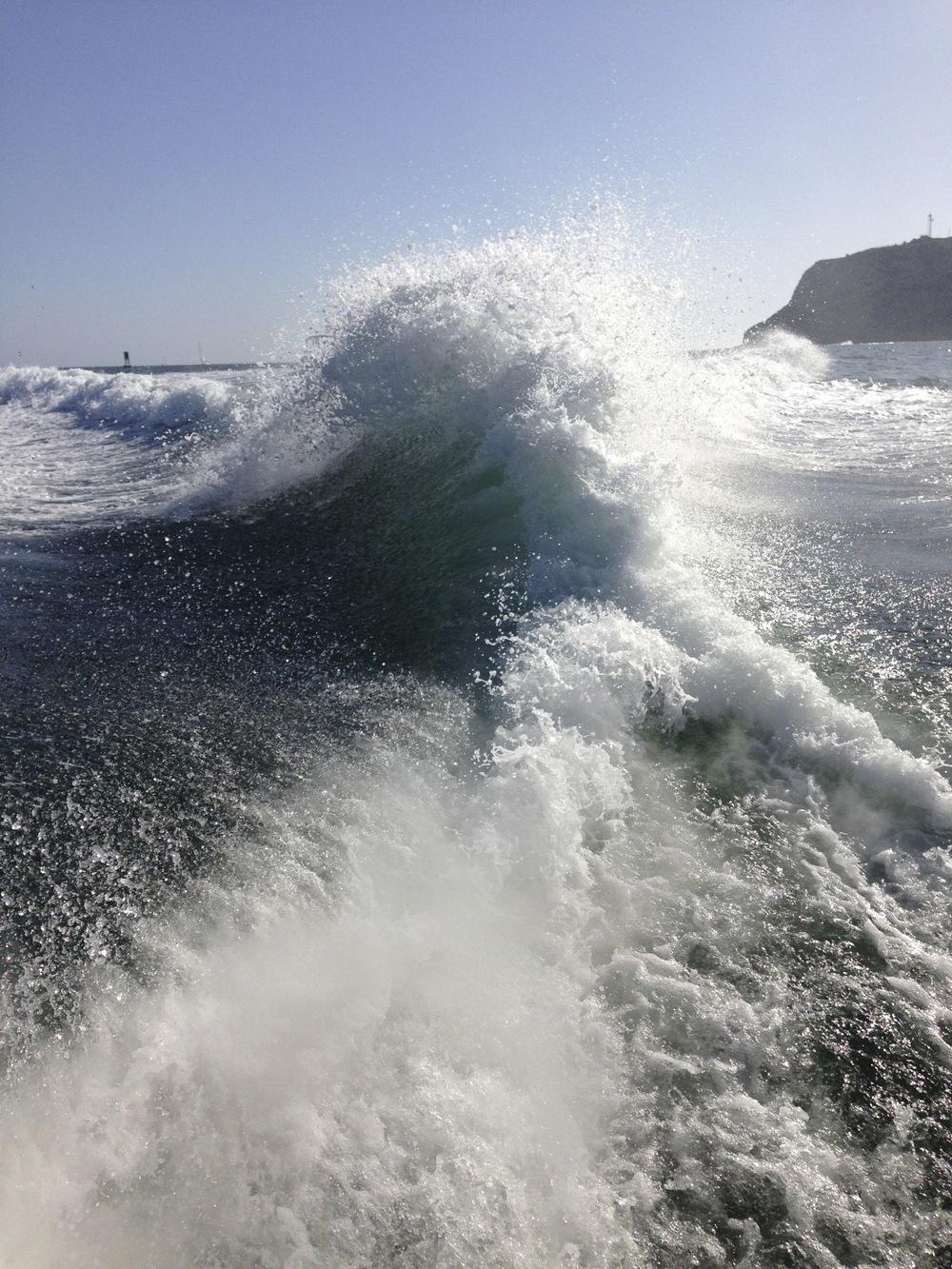 See San Diego Bay Aboard Mai Tai Yacht Charters