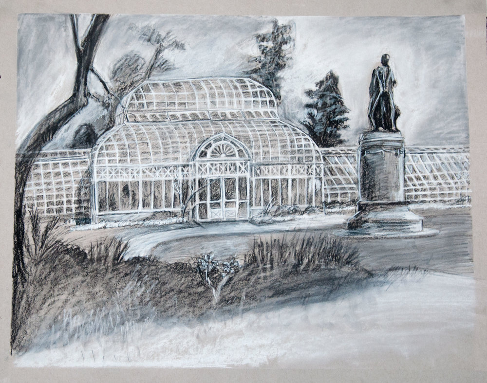 The Conservatory Charcoal on Toned Paper May 2016