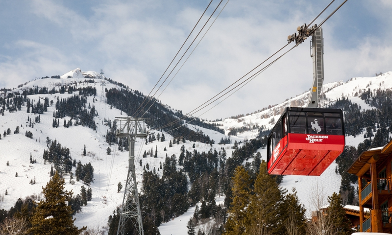 14620_G6OZl_Jackson_Hole_Ski_Resorts_lg.jpg