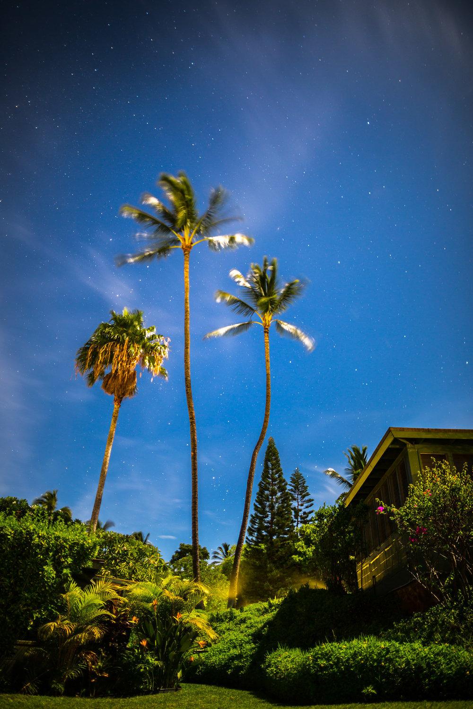 MR_140909_Maui_0825.jpg