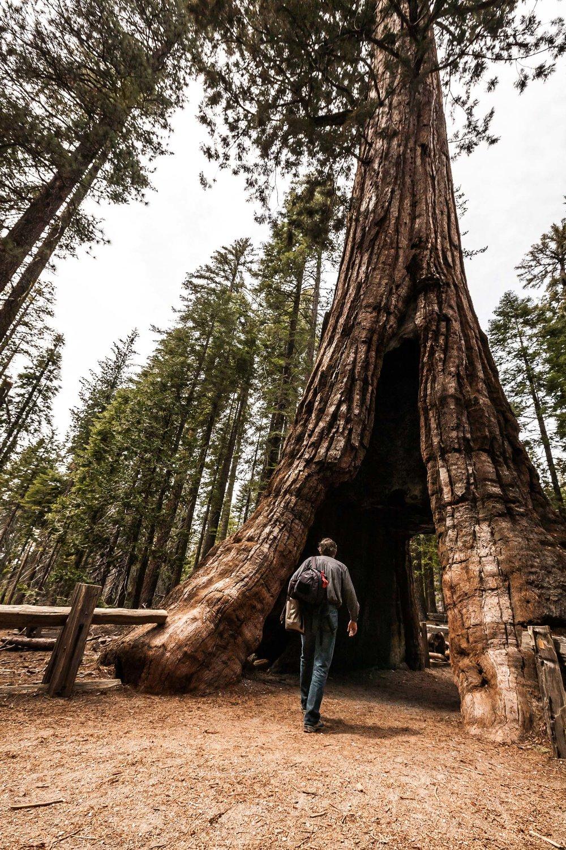 MR_080422_Yosemite_0268.jpg