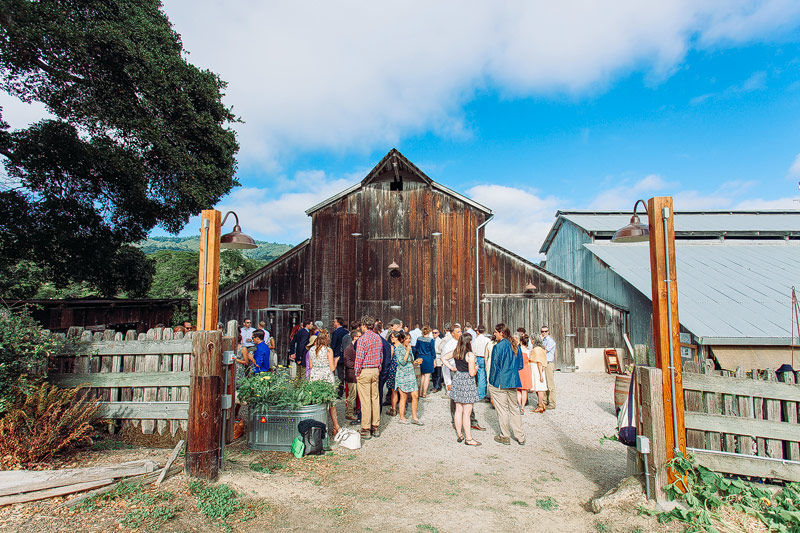 Bolinas wedding photos