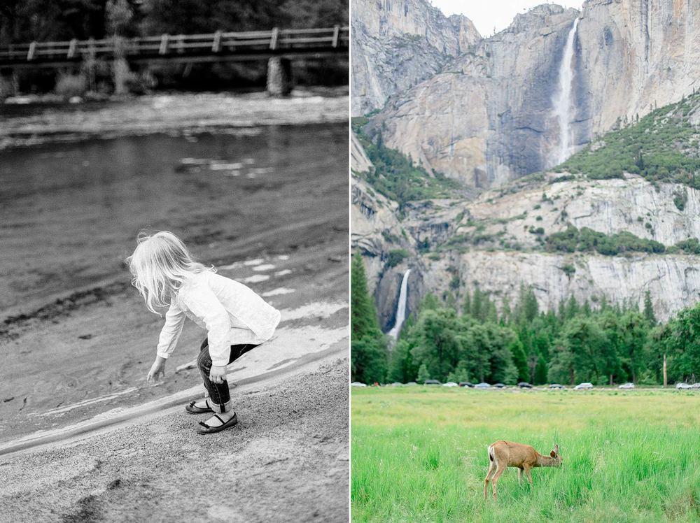 Yosemite Family Photographer