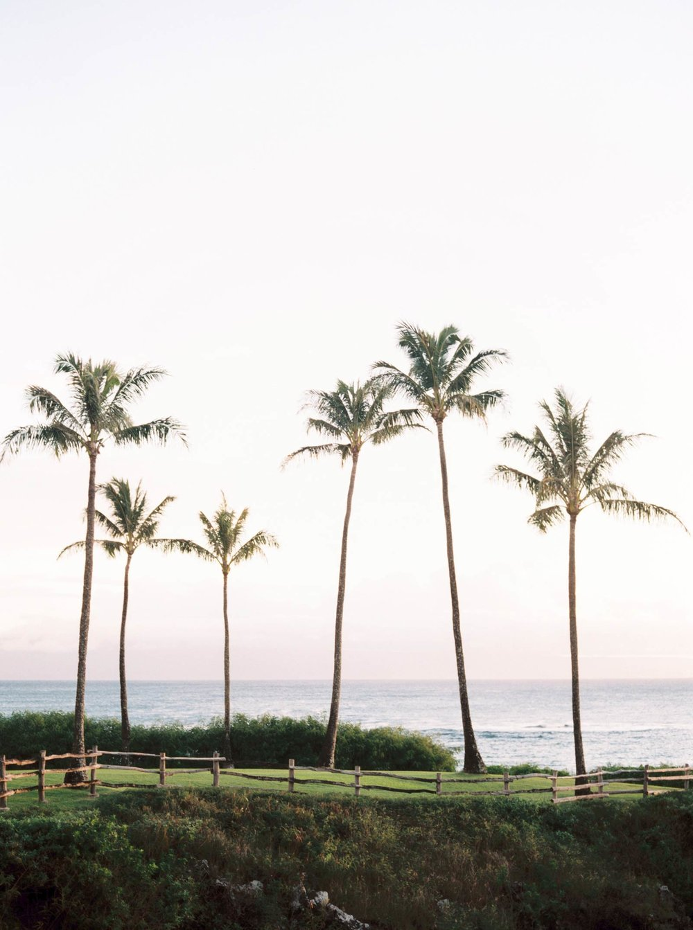 Maui-vow-renewal-family-photos-003.jpg