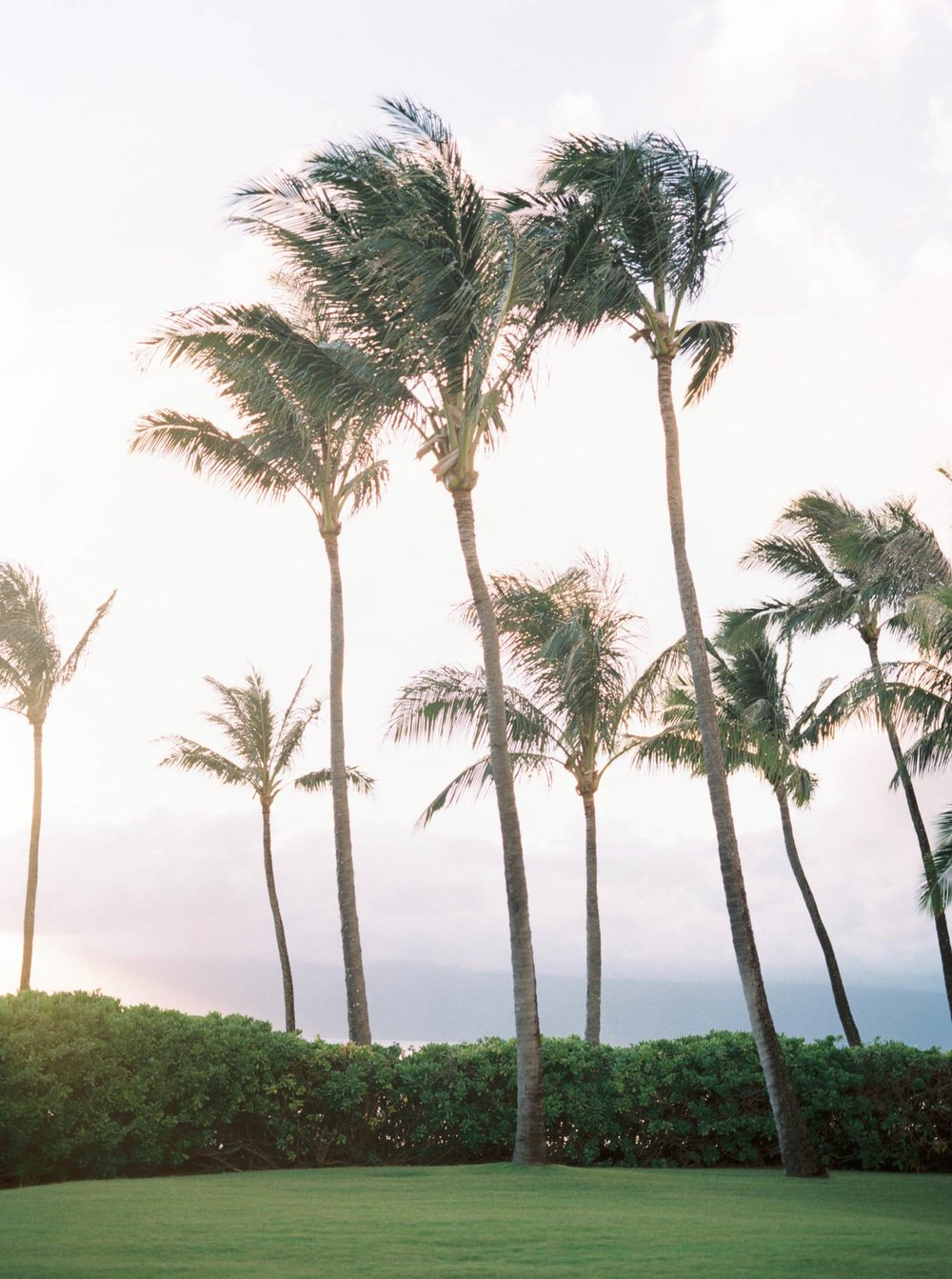 Maui-vow-renewal-family-photos-029.jpg