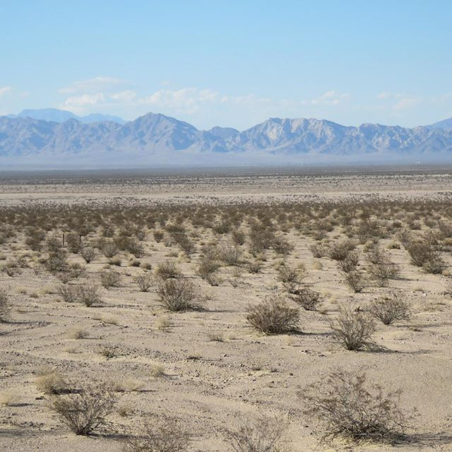 A reminder of what we're supporting, the creation of the Mother Road/Mojave Trails National Monument. A beautiful untouched landscape along Route 66. Thank you for the continued support. www.saveroute66.com #saveroute66 #mojavetrails #monumentsforall