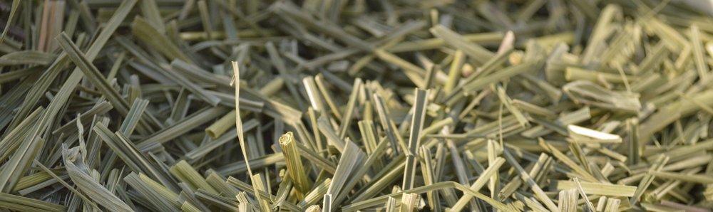 Lemongrass Bulk.JPG