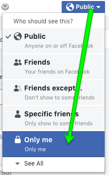 …and then you will see the option to post to Only me.