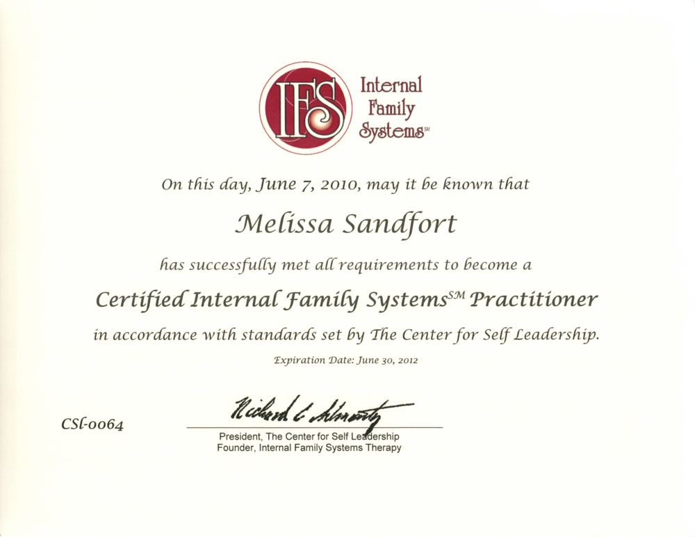 10 IFS Certification.png