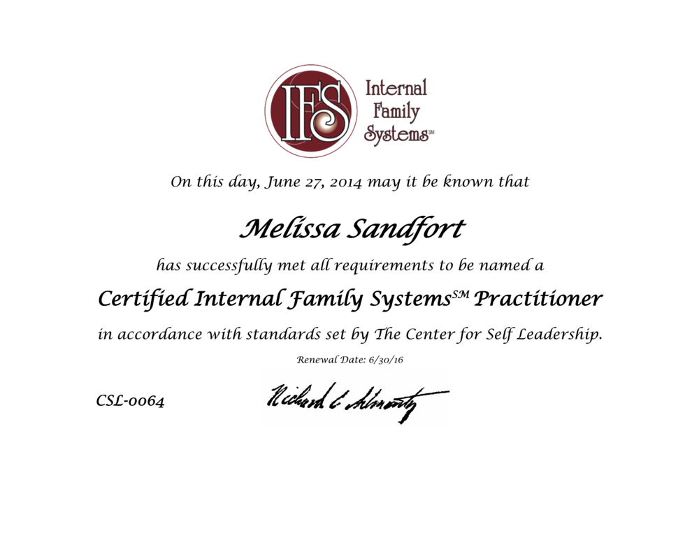 14 IFS Certification.png