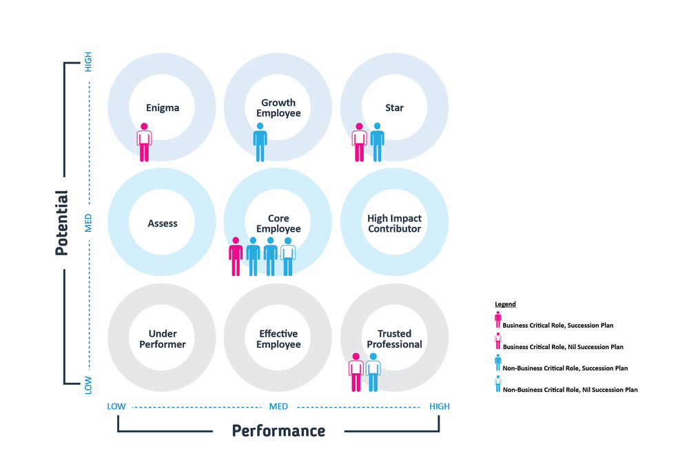 Talent Mapping — Peter William Partners