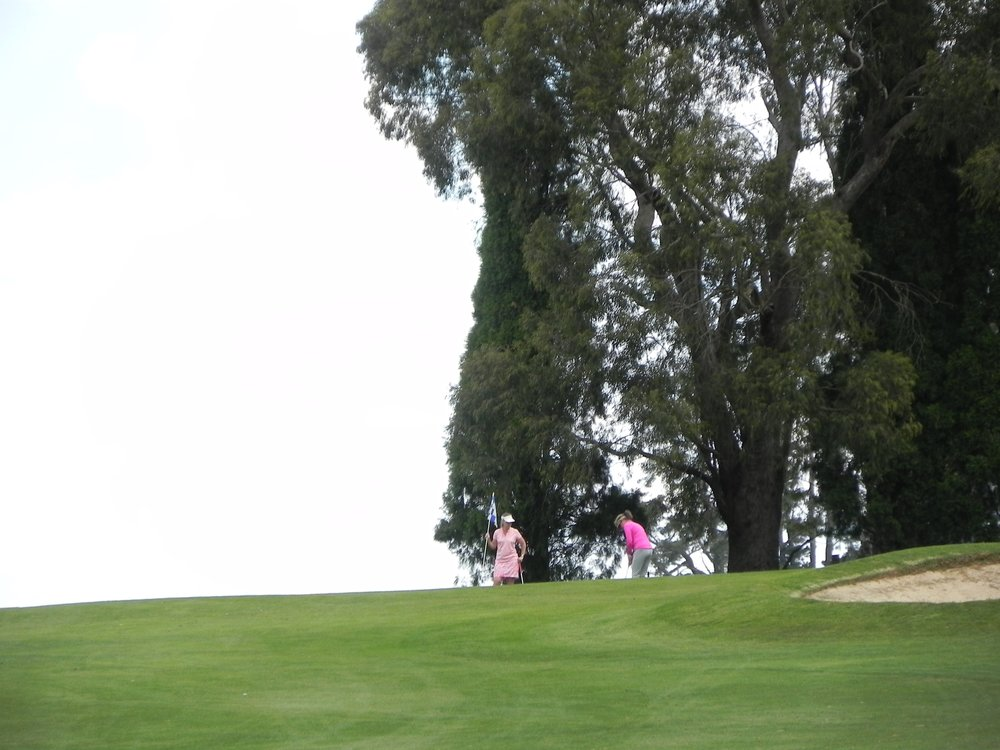 Copy of Girls on the Tee - Southern Highlands 2015