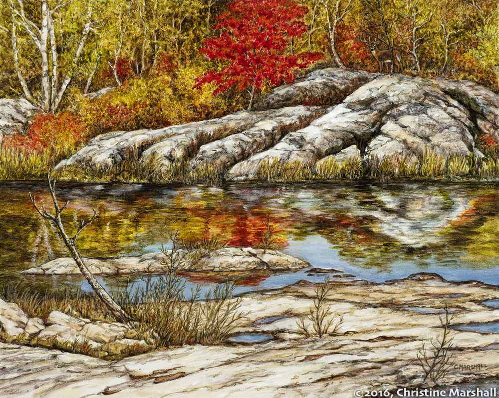 ChristineMarshall-Red Leafs-Refections _.jpg