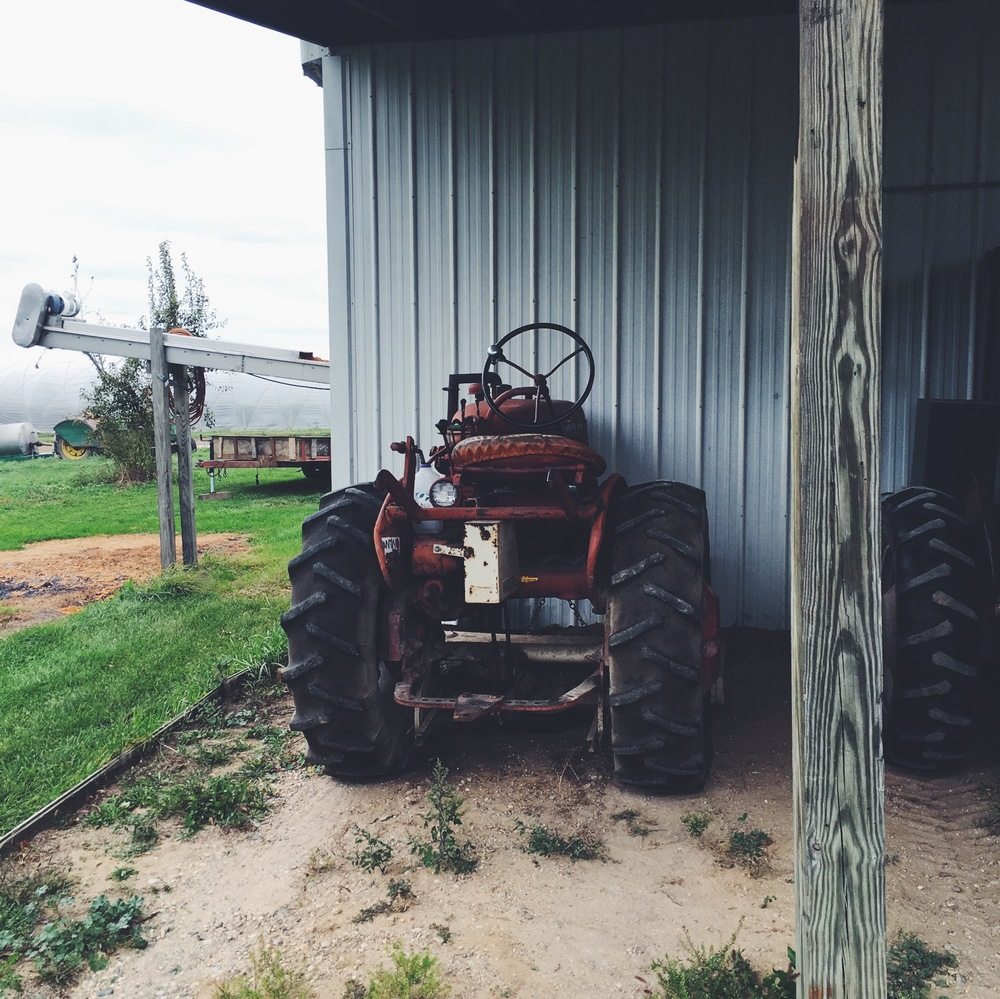 Cutest little rusty tractor
