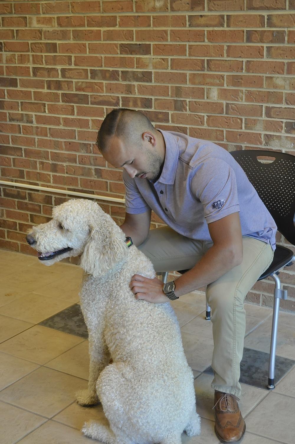 Dr. Jason Yakimishyn assessing his dog, Koda.