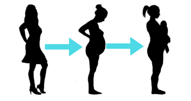 Major structural changes occur during pregnancy and after birth.