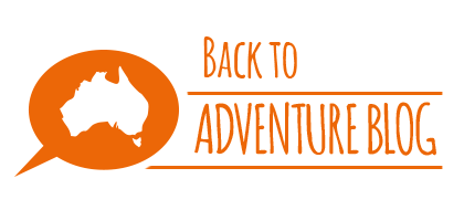 Back to Our Adventure Blog