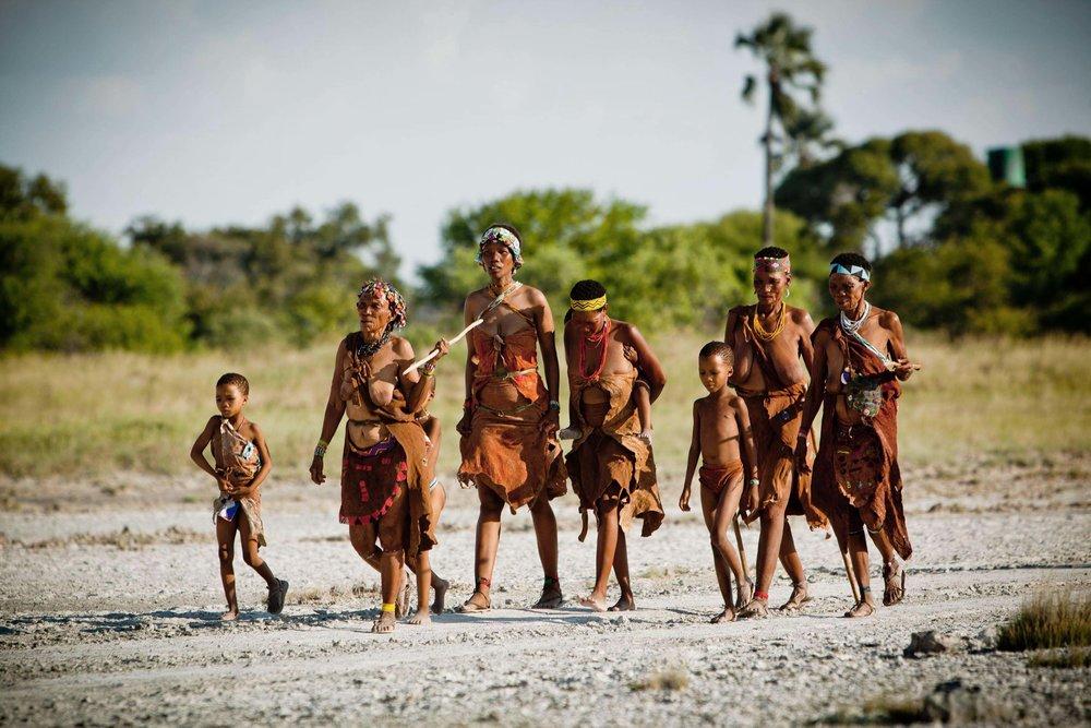 Bushman Walk 2.jpg