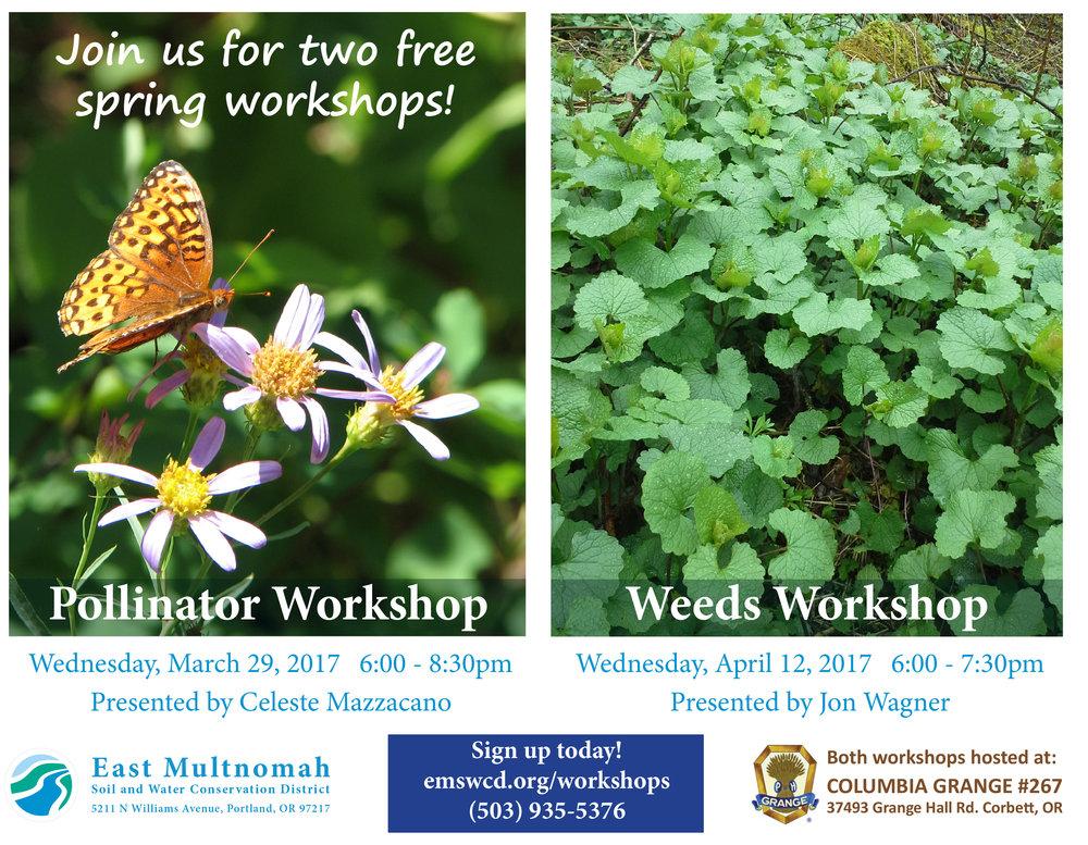 Spring workshops flyer.jpg