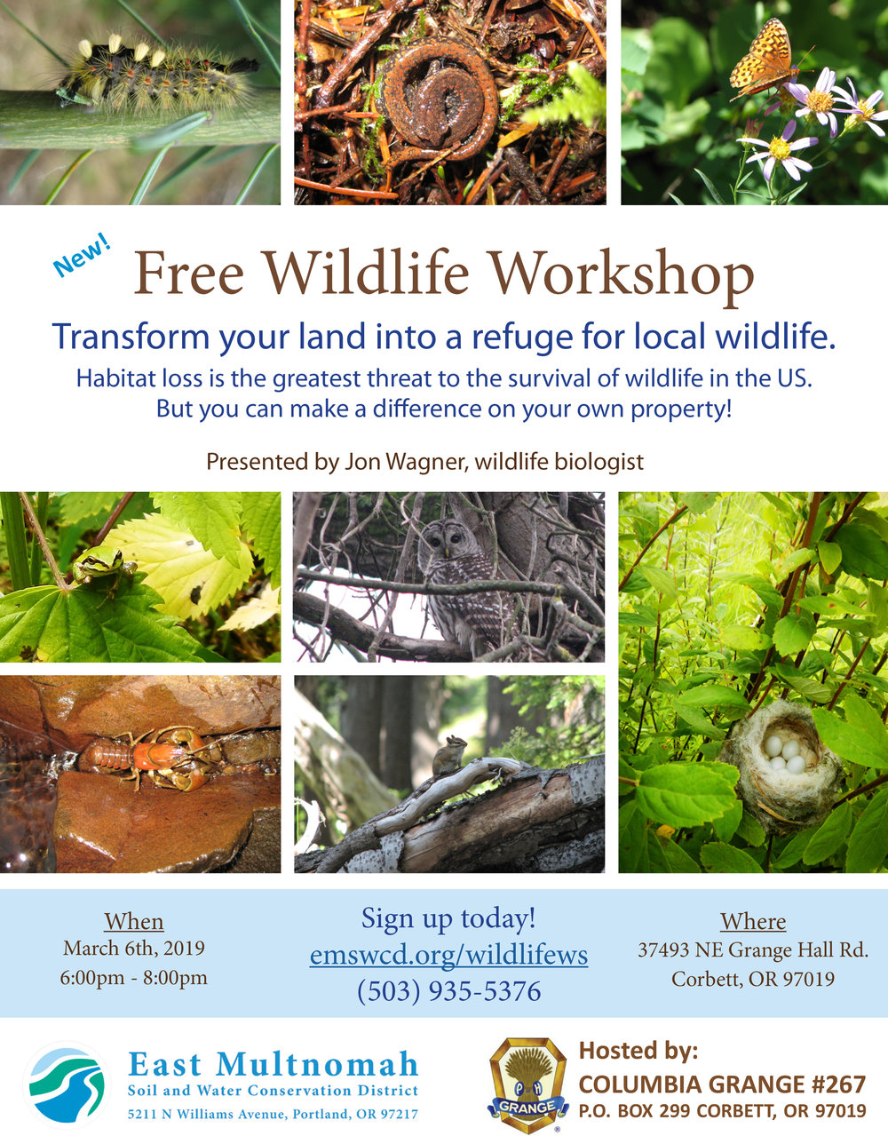Wildlife workshop.jpg