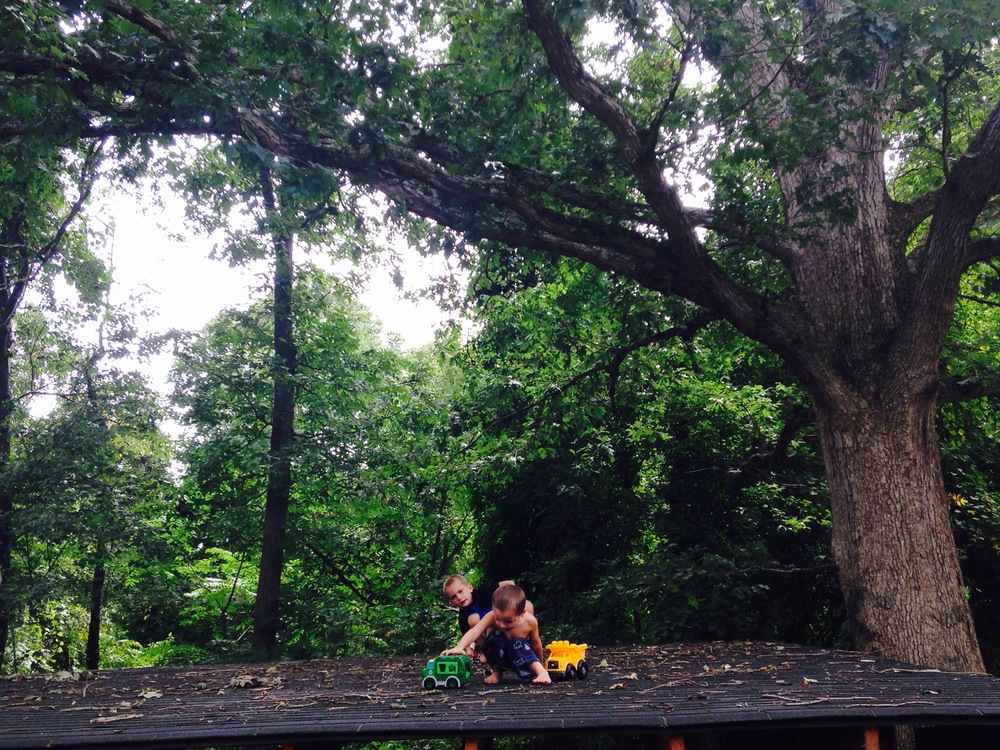 kids in trees_roof old fairview aug 2015.jpg