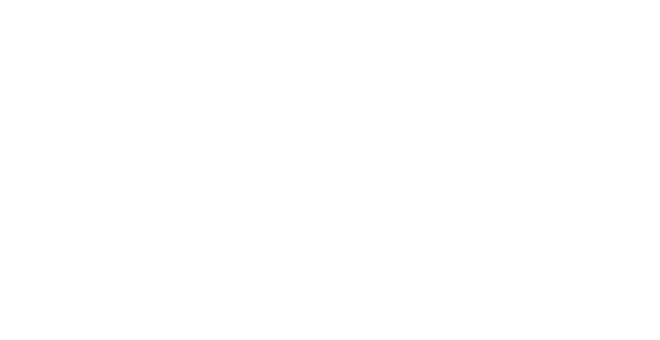 Pinion Software