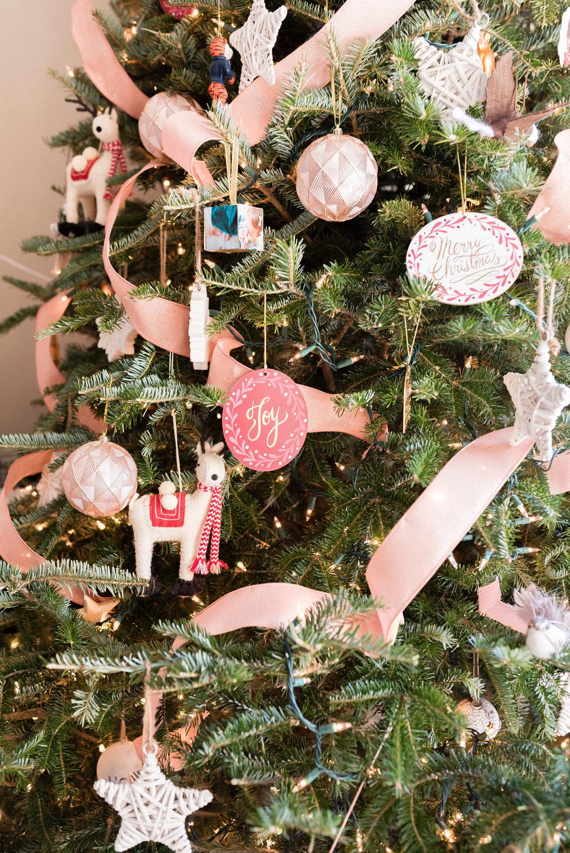 Christmas 2017-27.jpg