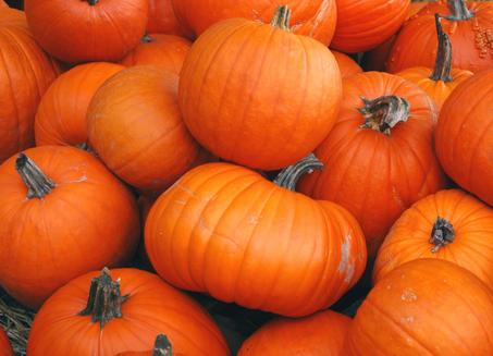 free-pumpkins-orange-county.jpg