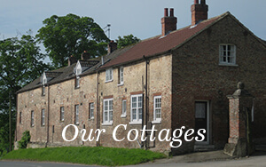 North-Dalton-Manor-Holiday-Cottages-Home-Our-Cottages.jpg