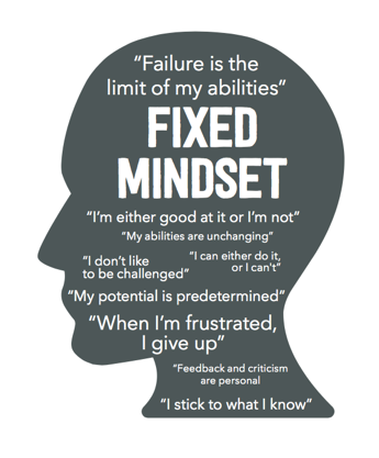 Fixed Mindset Rules:   - 1) Look smart at all times and at all costs 2) Effort is a bad thing. If I have ability, I shouldn't need effort. If I need effort, I don't have ability.3) A setback or deficiency measures me and reveals my limitations.