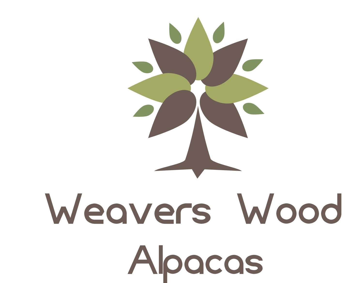 Weavers Wood Alpacas