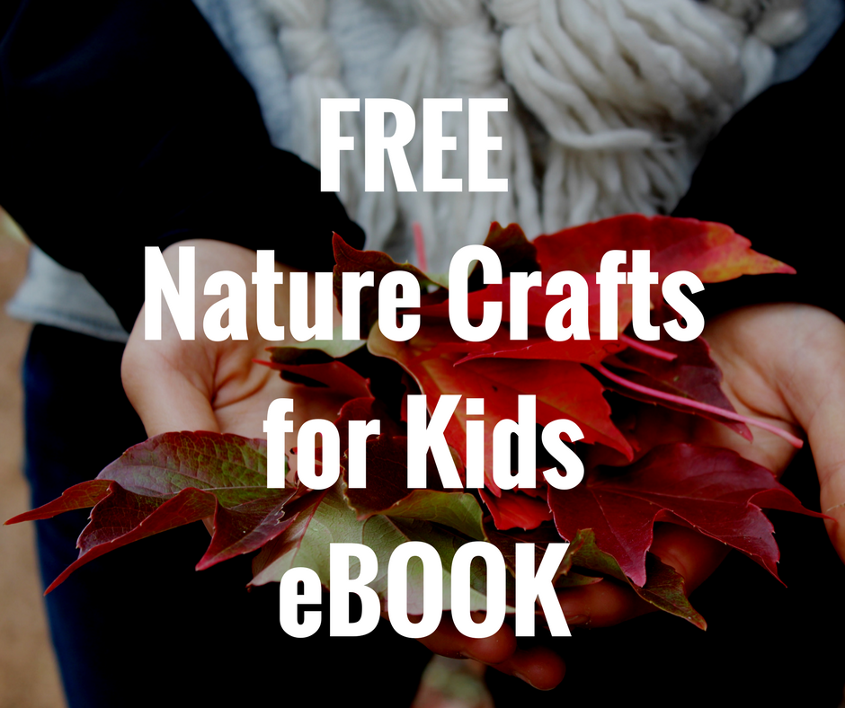 nature crafts ebook optin box.png